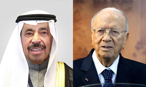 عبدالعزيز سعود البابطين يزور الرئيس التونسي الباجي قايد السبسي